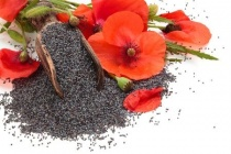 poppy-flowers-seeds