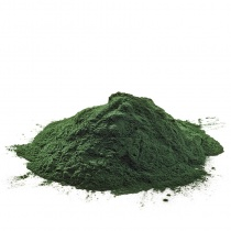 spirulina-algae-powder