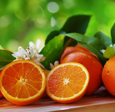 apelsns_orange-sweet-essential-oil