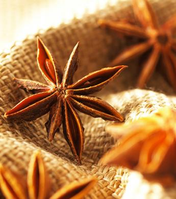 anss_star-anise-eo